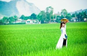 Погода в Нячанг, Вьетнам